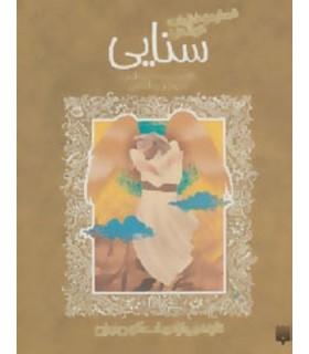کتاب قصاید و غزلیات خواندنی سنایی (تازه هایی از ادبیات کهن ایران)