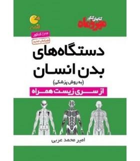 لقمه دستگاههای بدن انسان